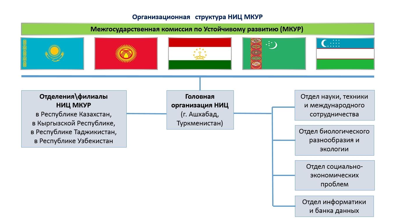 Организационная Структура НИЦ МКУР